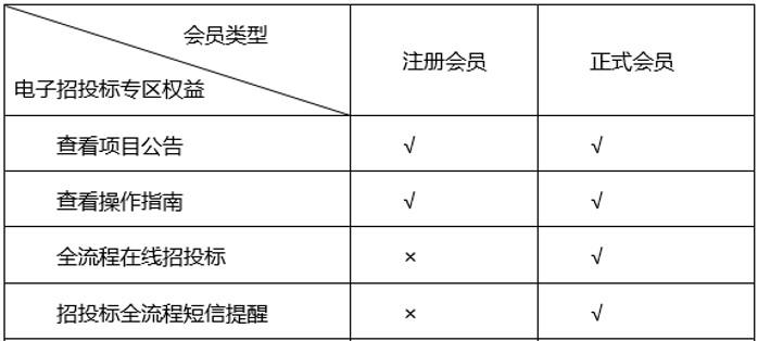 电子招投标.jpg